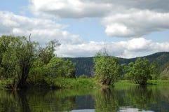 Il fiume siberiano Mana della montagna Immagine Stock Libera da Diritti