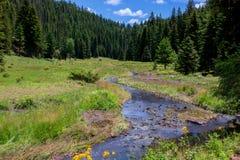 Tesori del New Mexico fotografie stock