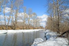 Il fiume sveglia in primavera Il ghiaccio si è fuso, ma i blocchi enormi di neve ancora appendono sopra le banche e sopra l'acqua fotografia stock libera da diritti