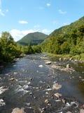 Il fiume vicino al livello cade gola, Adirondacks, NY, S.U.A. fotografie stock