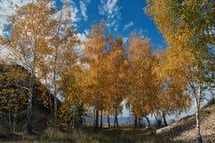 Il fiume Volga con l'autunno Immagine Stock Libera da Diritti