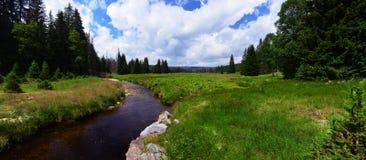 Il fiume Vydra, Sumava, repubblica Ceca Fotografie Stock Libere da Diritti