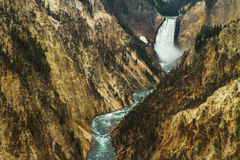 Il fiume Yellowstone che attraversa il canyon Fotografie Stock