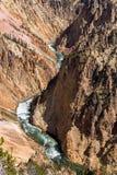 Il fiume Yellowstone e canyon, Wyoming Fotografia Stock
