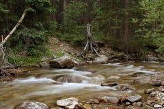 Il flusso calmante Fotografie Stock