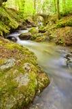 Il flusso fra il vecchi ponticello e rocce. Immagine Stock