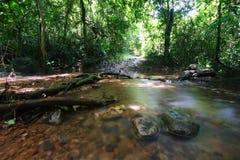 Il flusso nella foresta di Jad Kod, Tailandia. Fotografie Stock Libere da Diritti