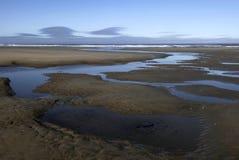 Il flusso serpeggia al mare Immagini Stock