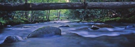 Il flusso a sta fermo Fotografie Stock