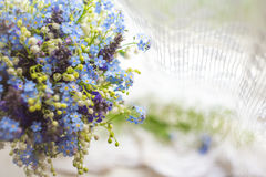 Il fondo astratto con i fiori selvaggi blu e bianchi luminosi sottrae il fondo con i fiori selvaggi blu e bianchi luminosi nel su Fotografia Stock Libera da Diritti