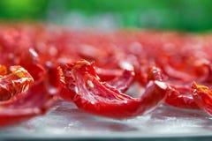 Il fondo del primo piano dei pomodori rossi affetta l'essiccazione all'aperto un giorno soleggiato Immagini Stock Libere da Diritti