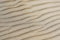 Il fondo della sabbia, vento ha formato il sollievo immagini stock