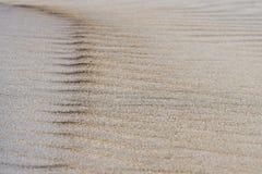 Il fondo della sabbia, vento ha formato il sollievo fotografie stock