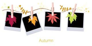 Il fondo delle foglie di autunno con la foglia d'attaccatura e la foto in bianco vector l'illustrazione Fotografie Stock