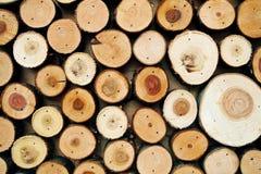 Il fondo di legno astratto di colore ha fatto di molti tronchi di albero tagliati immagini stock libere da diritti
