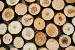 Il fondo di legno astratto di colore ha fatto di molti tronchi di albero tagliati fotografia stock
