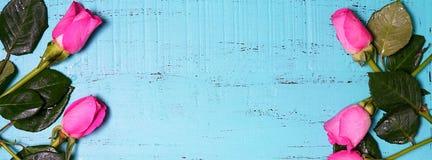 Il fondo di legno blu dell'acqua con la rosa di rosa germoglia il web sociale b di media Immagine Stock Libera da Diritti