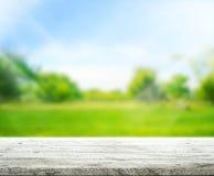 Il fondo di legno del piano d'appoggio e 3d verdi rendono Fotografia Stock