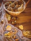 Il fondo di legno ed ha selezionato di recente il punto di vista superiore dei funghi polacchi dei funghi sul canestro di legno d fotografie stock