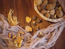 Il fondo di legno ed ha selezionato di recente il punto di vista superiore dei funghi polacchi dei funghi sul canestro di legno d immagini stock libere da diritti