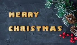 Il fondo di Natale con il ramo dell'albero di Natale con il pan di zenzero al forno esprime il Buon Natale Idea creativa Immagine Stock Libera da Diritti