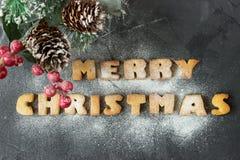 Il fondo di Natale con il ramo dell'albero di Natale e del pan di zenzero al forno esprime il Buon Natale con lo zucchero in polv Fotografie Stock