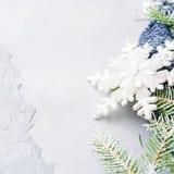 Il fondo di natale dell'inverno con la neve dell'albero di abete si ramifica Fotografie Stock