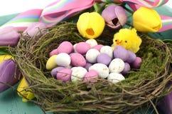 Il fondo di Pasqua con le uova di Pasqua dipinte in uccelli annida Fotografia Stock Libera da Diritti