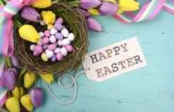 Il fondo di Pasqua con le uova di Pasqua dipinte in uccelli annida Fotografie Stock