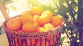 Il fondo di piccola dimensione arancio della merce nel carrello è giardino ha lightin del sole Fotografia Stock