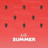 Il fondo di struttura dell'anguria con ciao l'estate segna l'illustrazione con lettere di vettore Immagini Stock Libere da Diritti