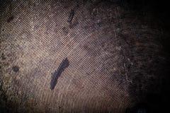 Il fondo di vecchia padella del metallo modificato Immagini Stock Libere da Diritti
