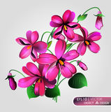 Il fondo di Violet Floral è isolato su un fondo bianco Fotografia Stock Libera da Diritti
