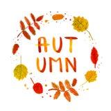 Il fondo disegnato a mano e la carta dell'acquerello d'annata delle foglie della betulla e della sorba con l'autunno scritto a ma Illustrazione Vettoriale