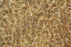 Il fondo marino attraverso la chiara acqua scintillante Fotografie Stock Libere da Diritti