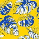 Il fondo senza cuciture floreale Palm Beach del modello della giungla tropicale va Fotografia Stock Libera da Diritti