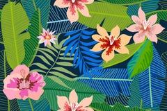 Il fondo tropicale d'avanguardia con le foglie e l'ibisco della banana fiorisce Immagine Stock