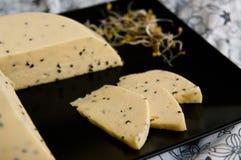 Il formaggio casalingo con i semi ed il ravanello sativa di Nigella germoglia Fotografie Stock Libere da Diritti
