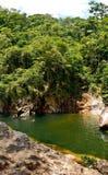 Il foro di nuoto alla ruota di fuoco cade nel parco nazionale i di Eungella Fotografia Stock Libera da Diritti