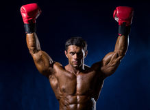 Il forte pugile muscolare in guantoni da pugile rossi ha sollevato il suo abov delle mani Fotografia Stock