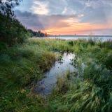 Il forte vento piega l'erba Bello tramonto sul lago Shartash yekaterinburg ural La Russia Immagine Stock