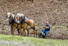 il forti agricoltore e cavallo team arando un campo Immagine Stock