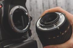 il fotografo attacca la lente alla macchina fotografica fotografia stock libera da diritti