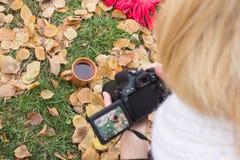 Il fotografo esamina il mirino sull'oggetto Fotografia Stock Libera da Diritti