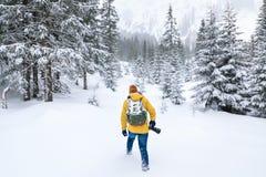 Il fotografo sta camminando nella foresta dell'inverno immagini stock libere da diritti