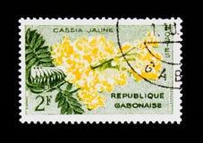 Il francobollo del Gabon mostra il ` di deareana del ` di cassia fistula dell'albero di doccia dorata, serie della flora, circa 1 Fotografie Stock Libere da Diritti