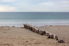 Il frangiflutti di erosione della sabbia situato a Victor Harbour sull'Australia del sud della penisola di fleurieu il 3 aprile 2 immagine stock
