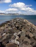 Il frangiflutti a Lyme Regis, Dorset fotografie stock libere da diritti