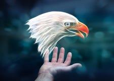 Il frattale della tenuta della persona ha messo in pericolo il renderin dell'illustrazione 3D dell'aquila Fotografia Stock