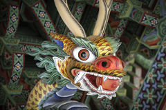 Il fronte del drago Fotografia Stock Libera da Diritti